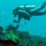 centre de plongée français Phuket